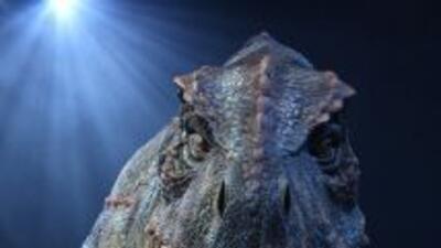 Un hombre en Nebraska cambió su nombre de manera legal a Tiranosaurio Re...