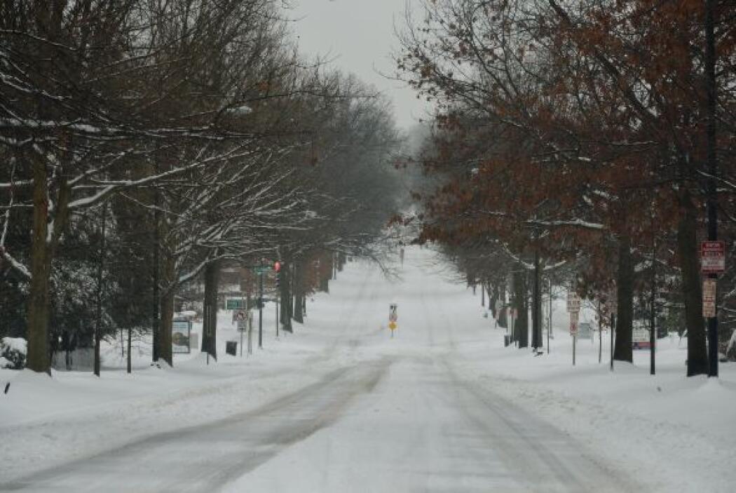 Miles de hogares están sin electricidad en los estados de Carolina del N...