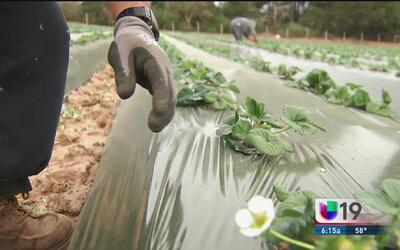 Taller de asistencia para veteranos y agricultores de California