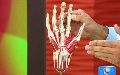 Cómo aliviar dolores y lesiones ocasionados por tu trabajo