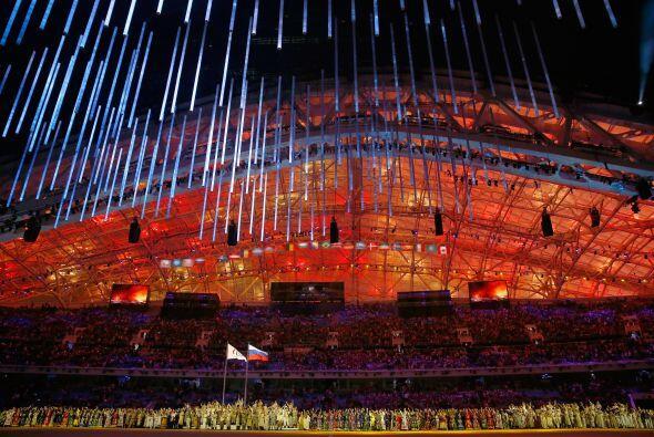 El 2014 fue año de Juegos Olímpicos de Invierno y por prim...