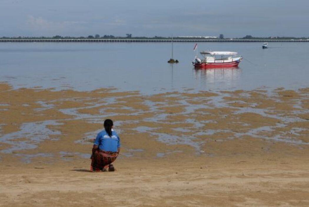 También hay barcos pesqueros que ayudan con esta tarea.