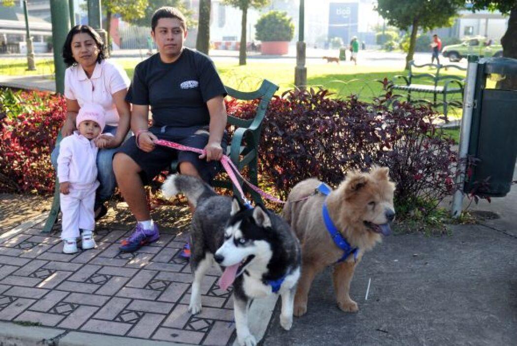 La Asociación Mascotas Terapéuticas fue fundada desde hace ocho años, co...