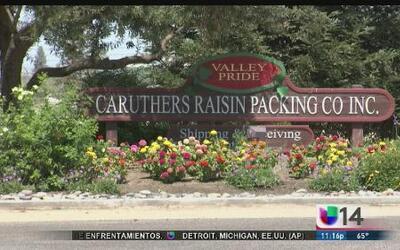 Patrulla de caminos de Caruthers detiene a un alto porcentaje de latinos