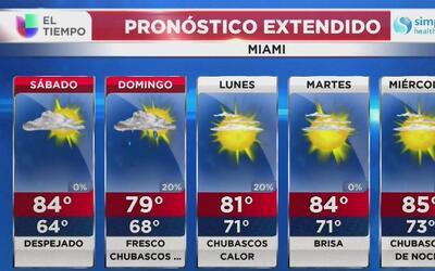 El Tiempo en Miami: despejado y con temperaturas cálidas para este sábad...
