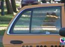 Se salvan de milagro hombres baleados en taxi
