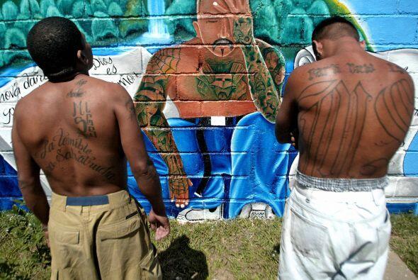 La mayoría de las pandillas está integradas por centroamericanos y manti...