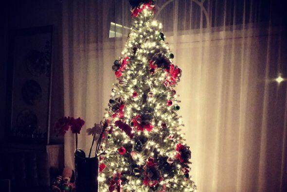 Además compartió una foto de su árbol, decorado especialmente por sus hi...