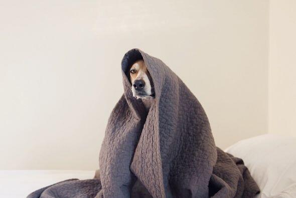 No importa el frío, Maggie siempre está lista para la c&aa...
