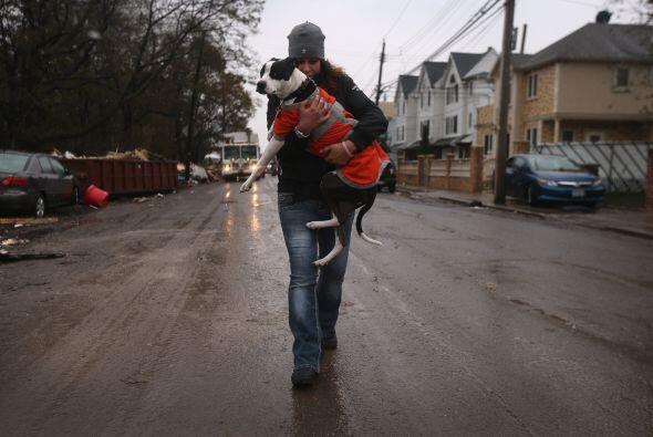 El huracán 'Sandy' pasó por Estados Unidos y dejó alrededor de 120 muert...