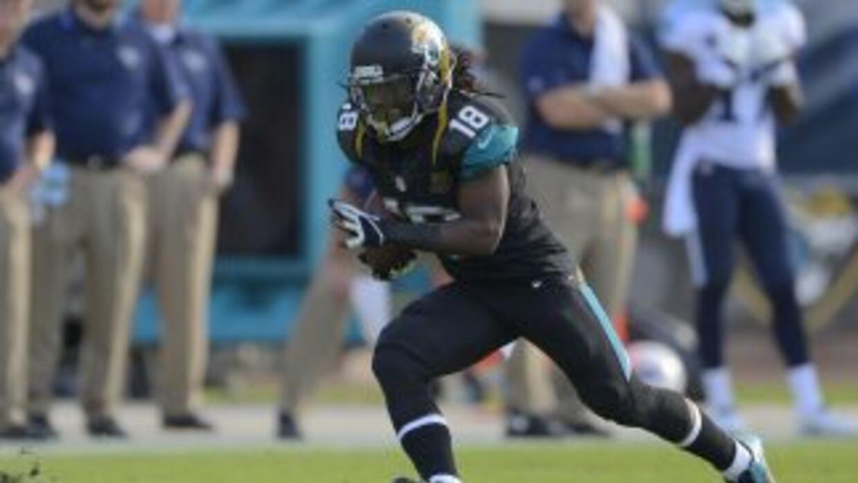 Ace Sanders (AP-NFL).
