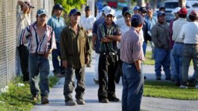 En Estados Unidos viven 11 millones de inmigrantes indocumentados. De el...