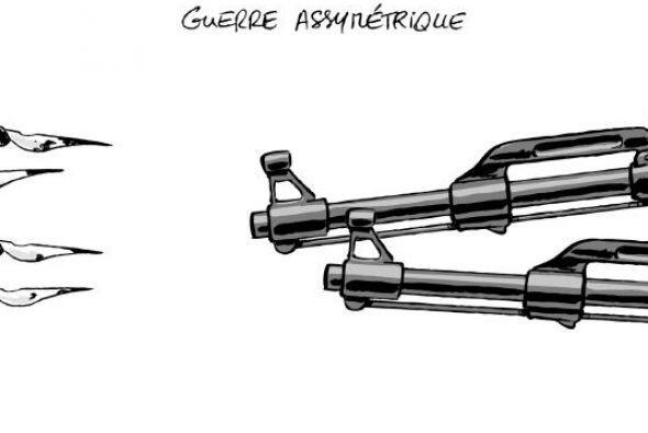 IXENE - Ixène - Dessinateur de Presse - Illustrateur @ixene_dessin