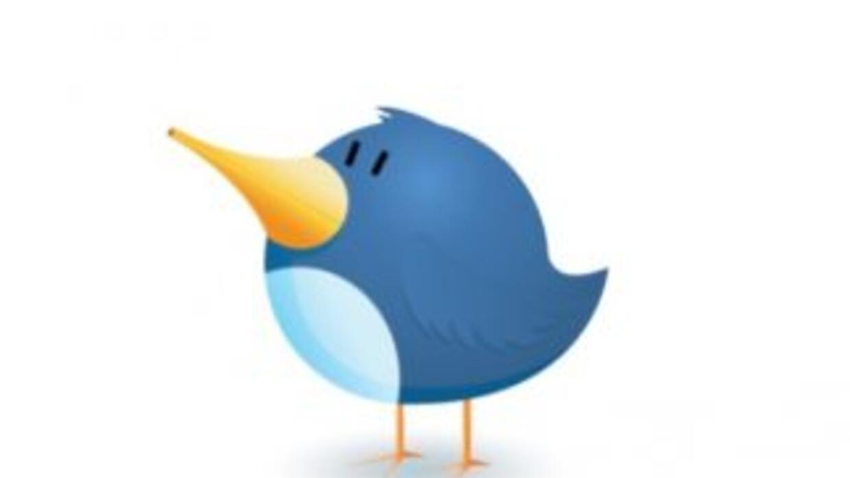 El pajarito de Twitter está más ocupado que nunca.