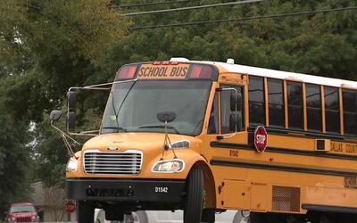 Se desata polémica por ausencia de sistema de seguridad en autobuses esc...