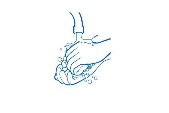 ¿Cuál es la mejor manera de lavarse las manos para evitar los gérmenes?...
