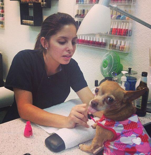 """Miren a @honeyberrytv, aprovechó para su manicura"", compartió Ana Patri..."