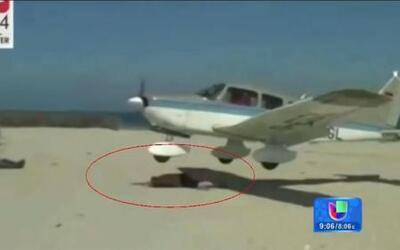 Avioneta por poco aterriza sobre bañista en la playa