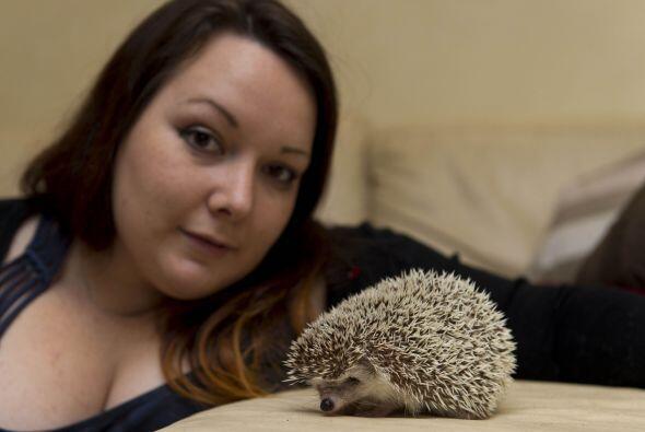 Los animales son la obsesión de esta chica,