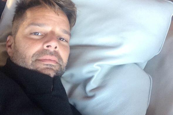 Ricky descansando en pleno vuelo.