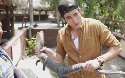 Danilo Carrera se fue a 'jugar' con cocodrilos