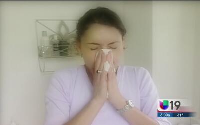 ¿Cómo combatir las alergias?