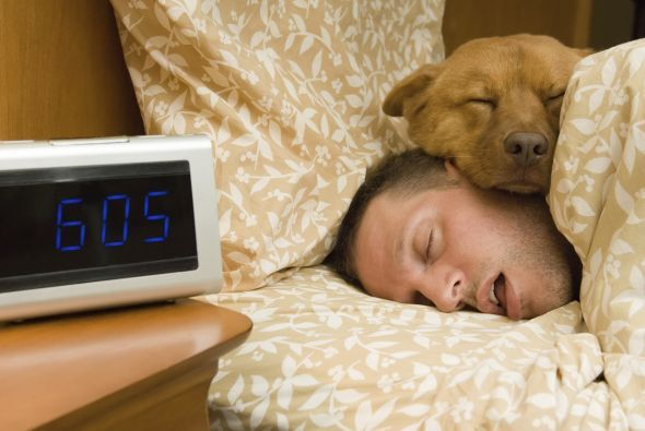 2. Ayuda a dormir mejor  Si eres propenso a sufrir de insomnio por diver...