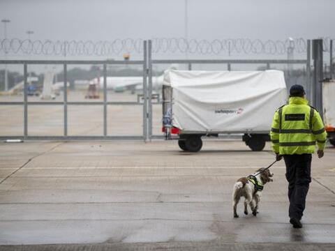 La policía de la frontera en Reino Unido, cuenta con perros detec...