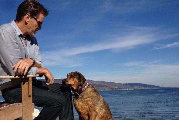 Lleva a Shiloh a pasear a bellísimas playas