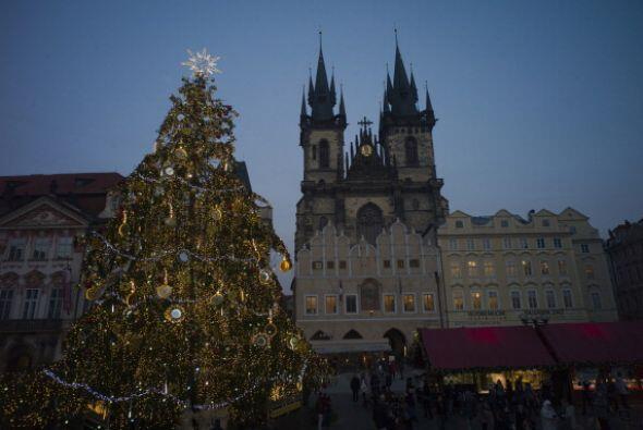 En Praga, República Checa un árbol natural adorna la plaza...