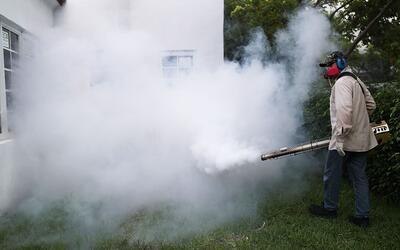 Nuevo estudio insta a extender los esfuerzos de fumigación a los...