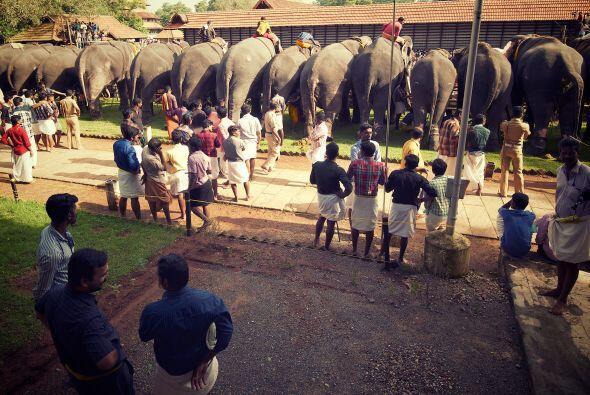 Muchos de los famosos templos del sur de India tienen una serie de elefa...