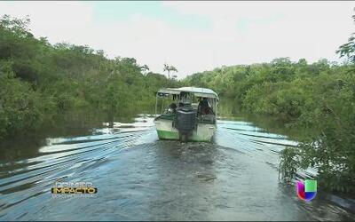 Viaje al centro de la selva amazónica con sus secretos y peligros