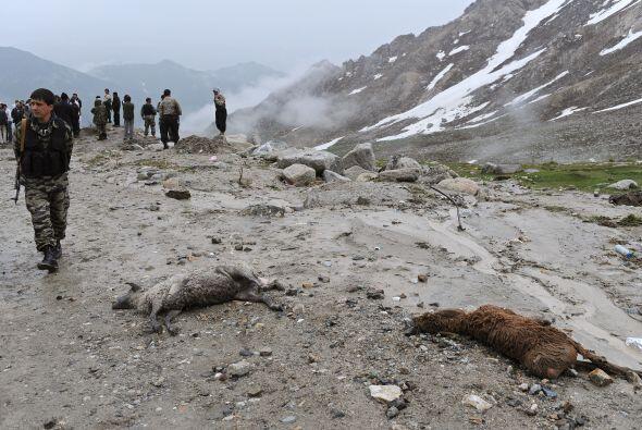 17 de mayo: Unas 43 personas perdieron la vida al estrellarse un avión d...