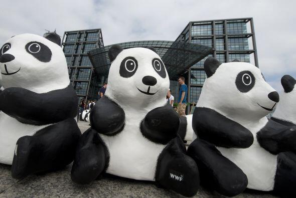 Hasta el mes de octubre, la campaña Pandas on Tour visitar&aacute...