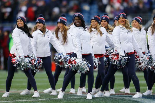New England Patriots: AMBER