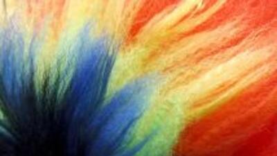 Encuesta uniones gay Brasil