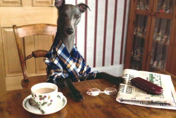 Por la mañana nada mejor que una taza de café y el periódico para estar...