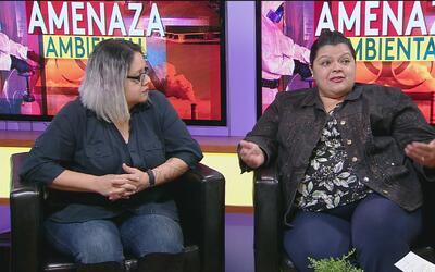 Mujeres representantes de grupos ambientales hablan de su lucha por mant...