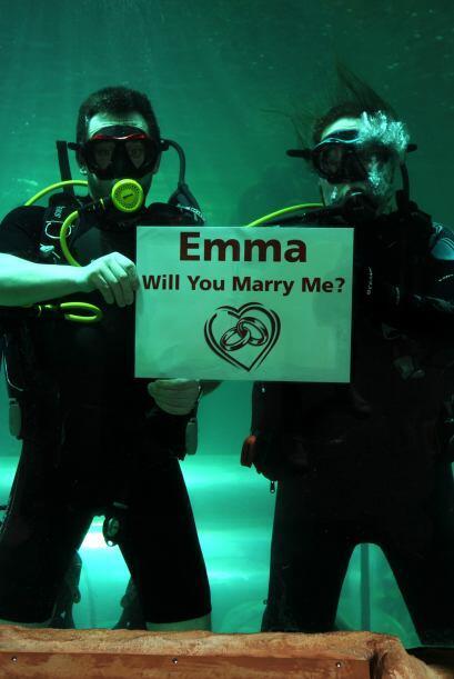Quienes con una pancarta mostraron la tan esperada pregunta ¿Emma, te qu...