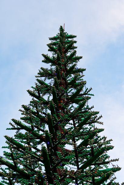 Un portavoz del parque aseguró que el árbol está diseñado para estar en...