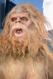 Resuelven Misterio Del Abominable Hombre Las Nieves