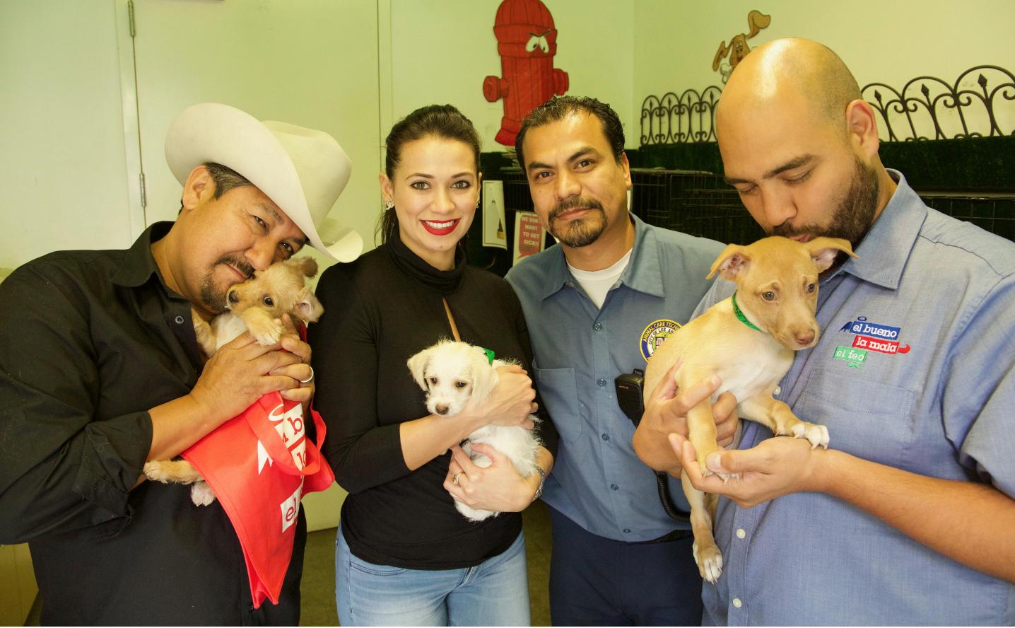 Abre la puerta de tu hogar a una mascota y nosotros te ayudamos con los gastos de adopción