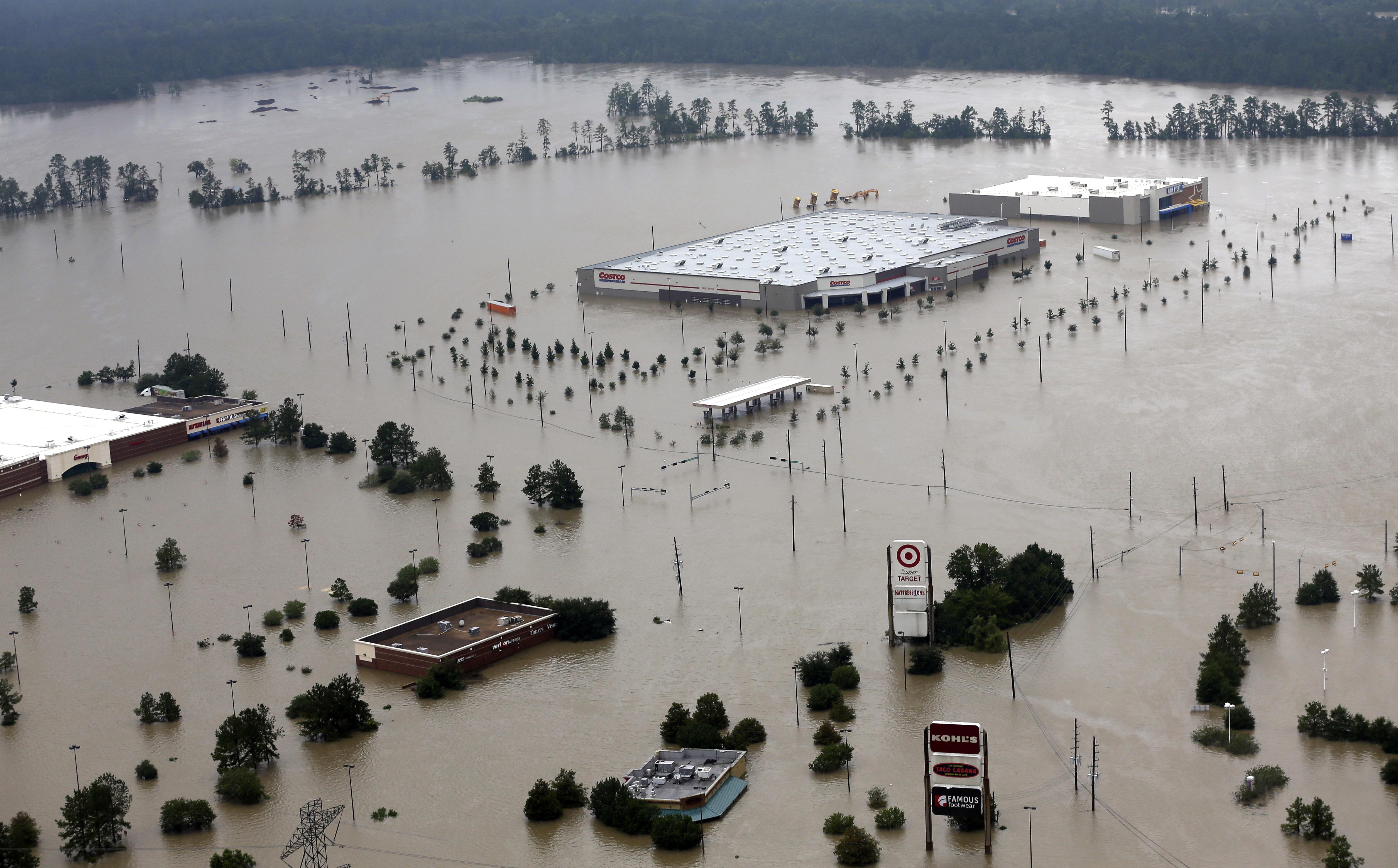 https://www.univision.com/noticias/huracan-harvey/louisiana-ofrece ...