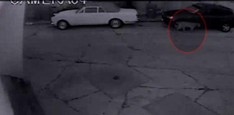 Las imágenes reveladas por videos de seguridad han alertado a la comunidad.