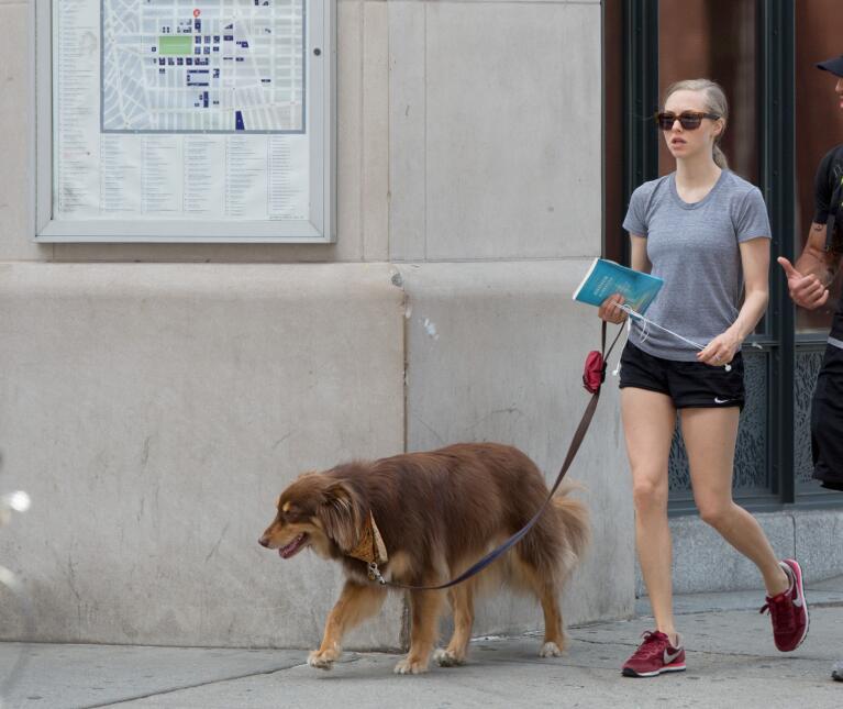 Amanda Seyfried de paseo con su perro