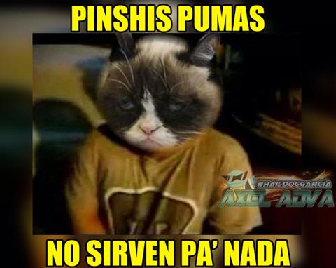 Pumas busca al agresor de Cecilio Domínguez 17353120_1275747172507975_37...