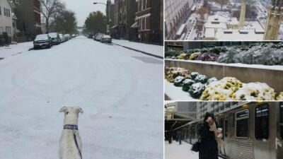 Se registra la primera nevada del año en Chicago
