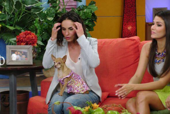 La actriz llegó para contarnos cómo se ha sentido con su protagónico com...