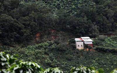 En los rincones de Costa Rica, nace un negocio delicioso y muy tradicion...